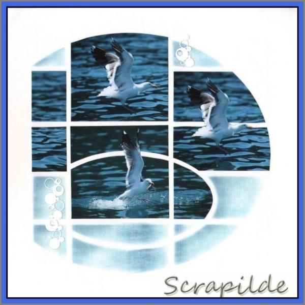 Azza voorbeelden - Chante - 03